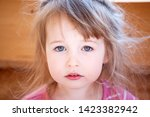 three years old shaggy white... | Shutterstock . vector #1423382942