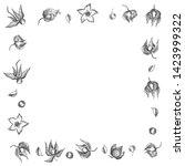 ashwagandha hand drawn border...   Shutterstock .eps vector #1423999322