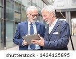 two happy smiling senior gray... | Shutterstock . vector #1424125895
