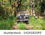 chitwan national park  nepal  ... | Shutterstock . vector #1424181095