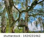 Rustic Bird House Hanging In...