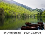 Montenegro, Pretty brown wooden rowboats anchoring on silent water of biogradsko glacial lake reflecting perfect nature landscape of biogradska gora national park - stock photo