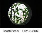Porthole Or Round Hole Window...