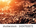 Fertile soil with soft orange lighting and side view. A place for text and advertising fertilizers for plants and agricultural enterprises.