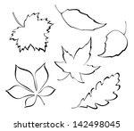 vector falling leaves  ... | Shutterstock .eps vector #142498045