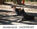 canine portrait  dog obedience...   Shutterstock . vector #1425498185