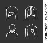 healthy human organs chalk... | Shutterstock .eps vector #1425644345