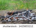 wooden camp fire in woods   Shutterstock . vector #1425855212