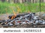 wooden camp fire in woods   Shutterstock . vector #1425855215