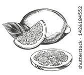 fruit lemon citrus with leaves... | Shutterstock .eps vector #1426184552