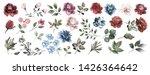 flower set. blue flowers pink...   Shutterstock . vector #1426364642