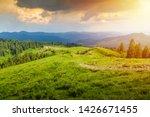 amazing landscape in bucegi... | Shutterstock . vector #1426671455