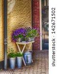 Flowers Enter To Home Door