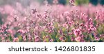 Nature Summer Background With...
