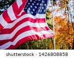 American Usa Flag Stars And...