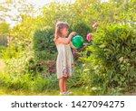 Summer Sunny Day In Garden....