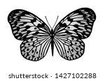 beautiful butterfly on white... | Shutterstock . vector #1427102288