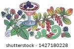 sweets  berries  fruits hand...   Shutterstock .eps vector #1427180228