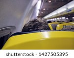close up head of tourist and...   Shutterstock . vector #1427505395