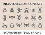 insect vector flat line icon... | Shutterstock .eps vector #1427577248