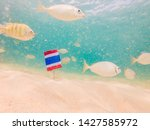 beautiful tropical fish on the...   Shutterstock . vector #1427585972