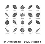 useful leaves silhouette icons... | Shutterstock .eps vector #1427798855