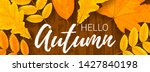 horizontal vector web banner... | Shutterstock .eps vector #1427840198