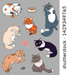 set of different cats in... | Shutterstock .eps vector #1429349765