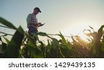 Young farmer working in a cornfield, inspecting and tuning irrigation center pivot sprinkler system on smartphone.