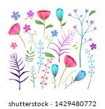 wild flowers flat vector... | Shutterstock .eps vector #1429480772