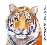 Tiger On A White Background