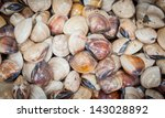 Small photo of BARRED LONG TOM shellfish (Ablennes hians) was sale in Thailand fish market