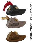 cartoon colorful musketeer hat...   Shutterstock .eps vector #1430495645