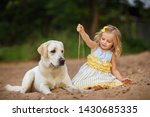 little girl with a labrador dog ... | Shutterstock . vector #1430685335