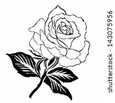 rose motif pattern on white... | Shutterstock . vector #143075956