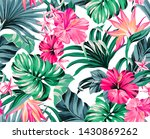 exotic tropical flowers in... | Shutterstock . vector #1430869262