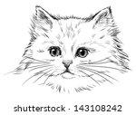 Stock photo white kitten 143108242