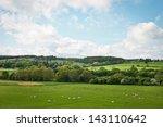 A Vibrant Northumberland Summe...