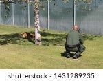 yuma sector  ariz.   us   april ...   Shutterstock . vector #1431289235