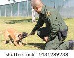 yuma sector  ariz.   us   april ...   Shutterstock . vector #1431289238