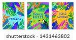 set of summer vector...   Shutterstock .eps vector #1431463802