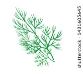 Isolated Object Of Dill And...