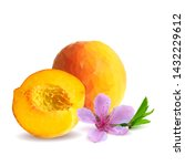 peach low poly. bloom of peach. ... | Shutterstock .eps vector #1432229612