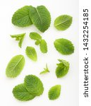 green mint leaves isolated on a ... | Shutterstock . vector #1432254185