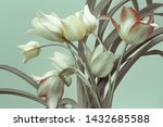White Tulips  Bouquet On A...