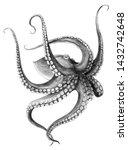 hand drawn common octopus... | Shutterstock . vector #1432742648