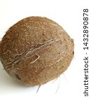 coconut isolated on white... | Shutterstock . vector #1432890878