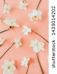 floral composition with... | Shutterstock . vector #1433014202