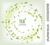 beautiful flying green tea leaf ... | Shutterstock .eps vector #1433365058