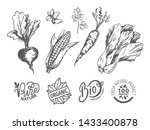 nature and organic  bio and... | Shutterstock .eps vector #1433400878